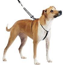 Anti-pull harness