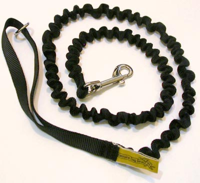 Bungee leash
