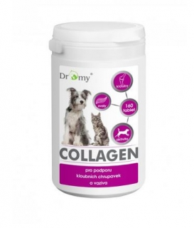 Collagen 120 tablet/100g